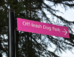 off leash park